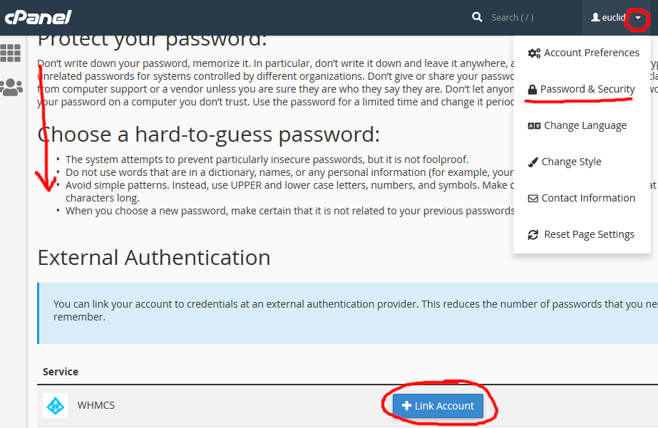 Screenshot of cPanel Password & Security options and linking a new external account
